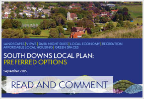 Local-Plan-Read-and-Comment